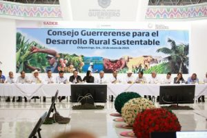 Héctor Astudillo de Guerrero pide más seguridad